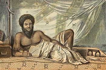 Chief's masi mosquito curtains