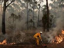 My fiery New Year in Australia