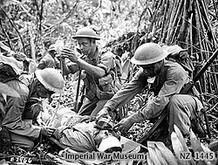 Fiji's Pacific warriors