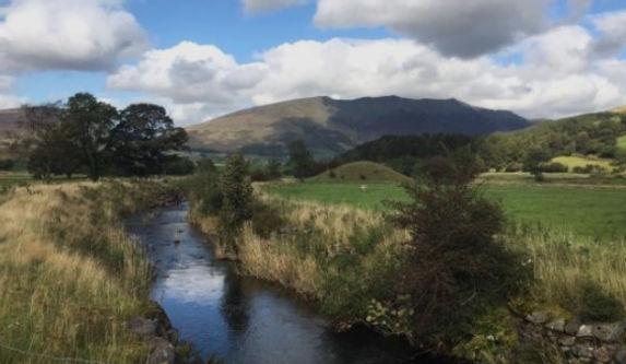 An award-winning environmental consultancy