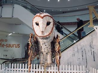 Giant Barn Owl