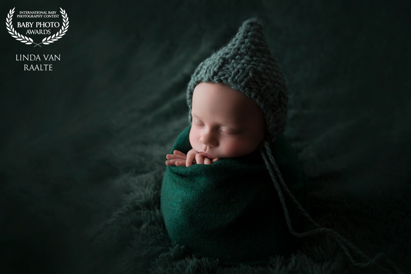 Fine art award winning newborn portret