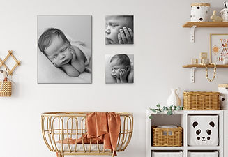 mockup7 newborn LP_edited.jpg