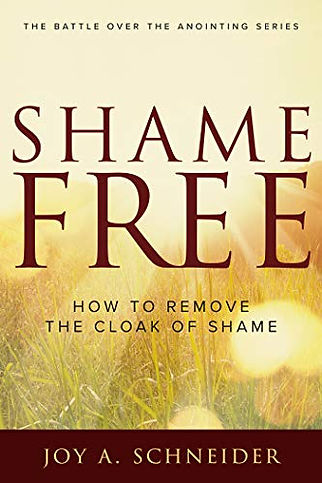Shame Free book cover.jpg