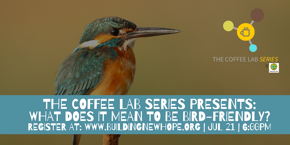 The Coffee Lab Series: Bird-Friendly Coffee - Why Should You Care?
