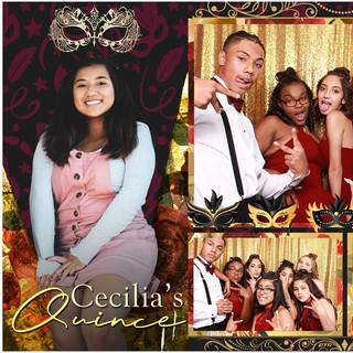 Cecilia's Quince