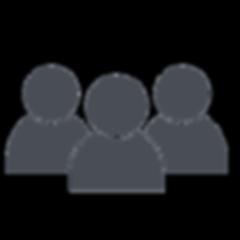 noun_group_519237_484d56.png