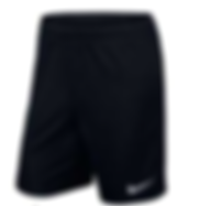 Nike Park II Knit Short BlackWhite.PNG