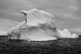 Antarctic Drifter