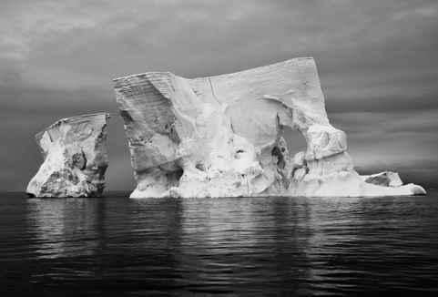 Bones of Ice