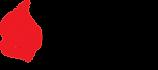 1200px-Apache_Ignite_logo.svg.png