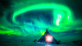 Under The Arctic Sky