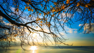 Autumn Sunset,Lake Bodensee