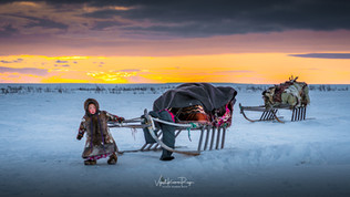In the Tundra,Nenets