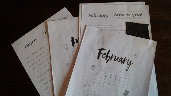 Sew The Year: February Roundup & March Goals