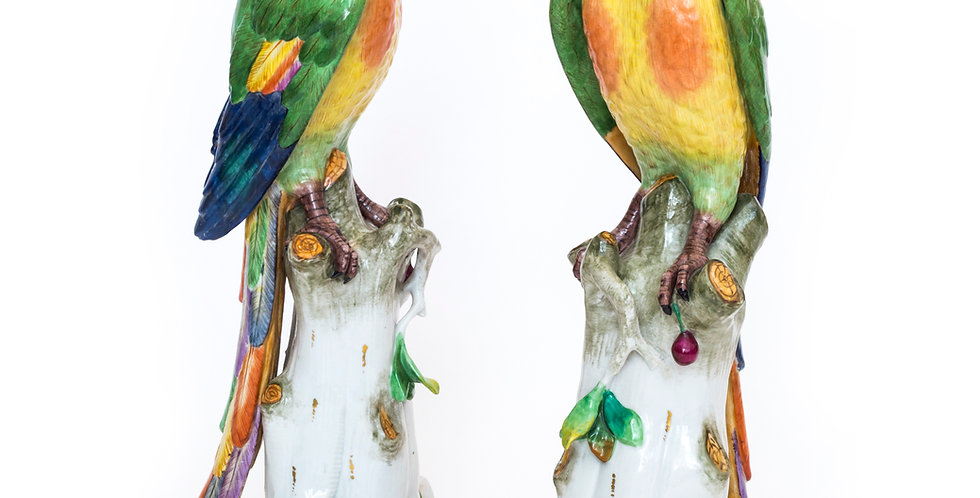 Massive Pair of Volkstedt Meissen Style Porcelain Macaw Parrots