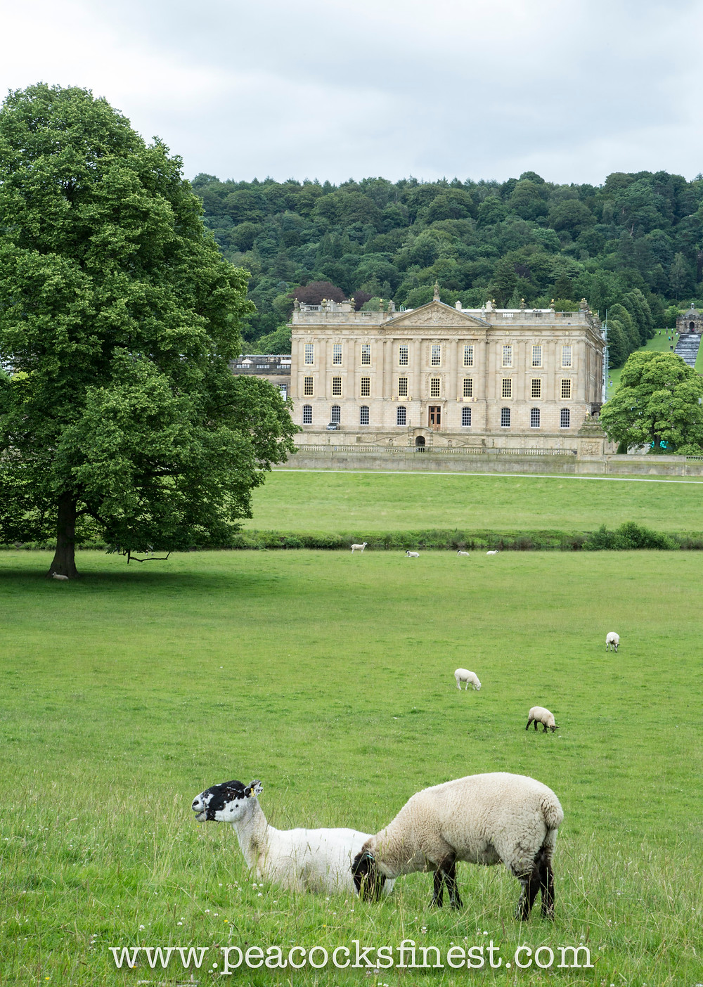 Best English Coutry Houses - Chatsworth House, Coutryside
