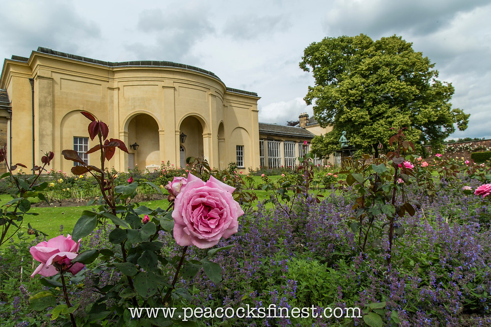 Nostell Priory, the gardens