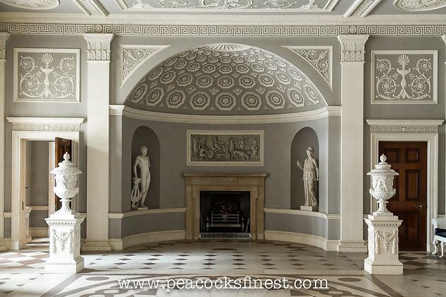 with antique marble statues in niches large vases on pedestals and elaborate wall and ceiling panels influenced by themes from the classical world
