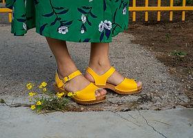 פרחים צהובים.jpg