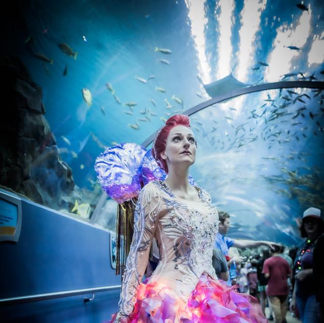 Mera (Jellyfish dress)