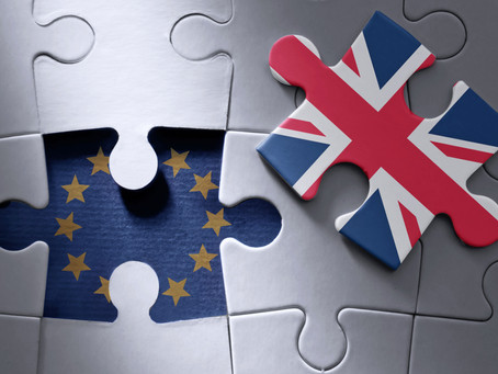 Goodbye EU - What's Happening in the next 11 months?