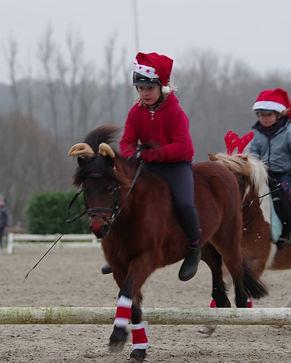 Nori u Pedro Weihnachtselche DKPR5310.JPG