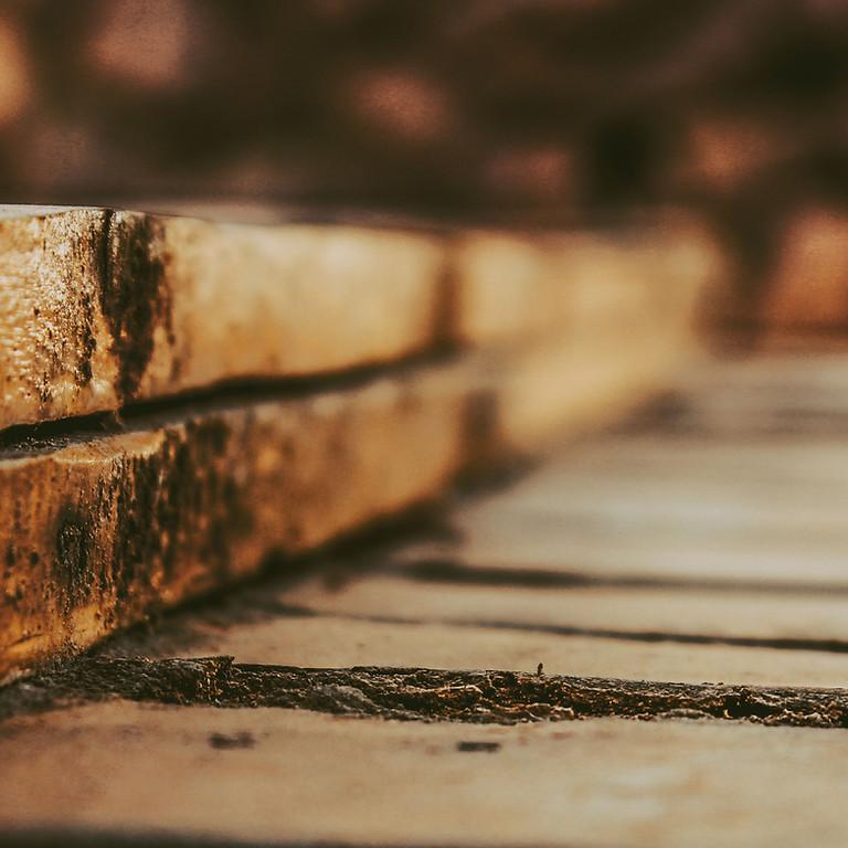 Mise en ouvre structure bois