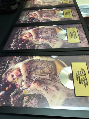 Custom CD Award