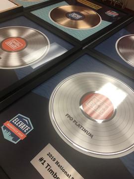 """12"""" Plainum DLX Record Awards"""