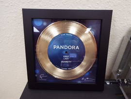 "7"" Custom 7"" Gold Record Award"