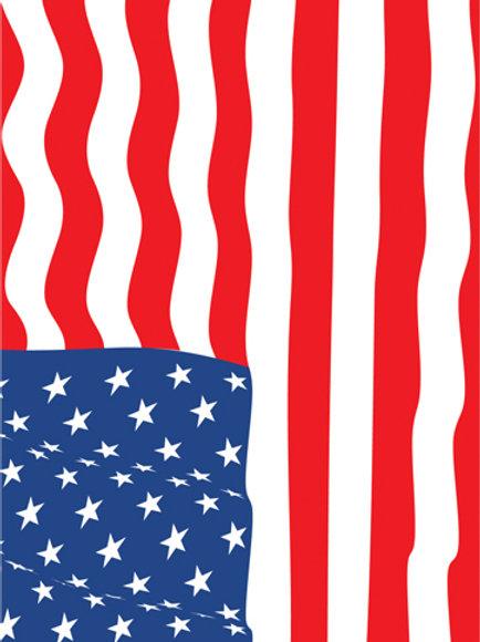 USA Flag #2