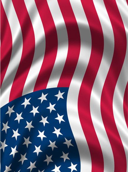 USA Flag #3