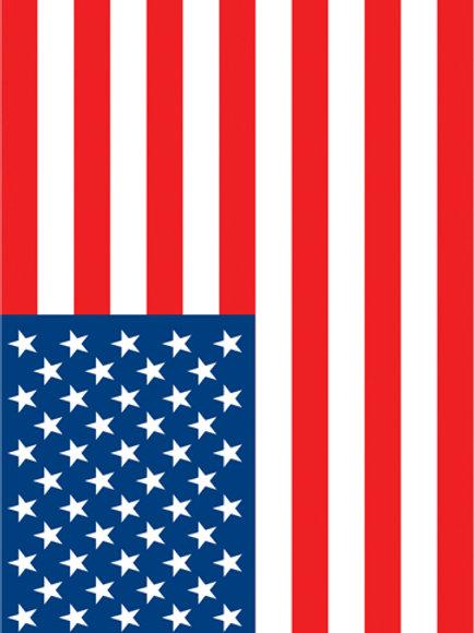 USA Flag #1
