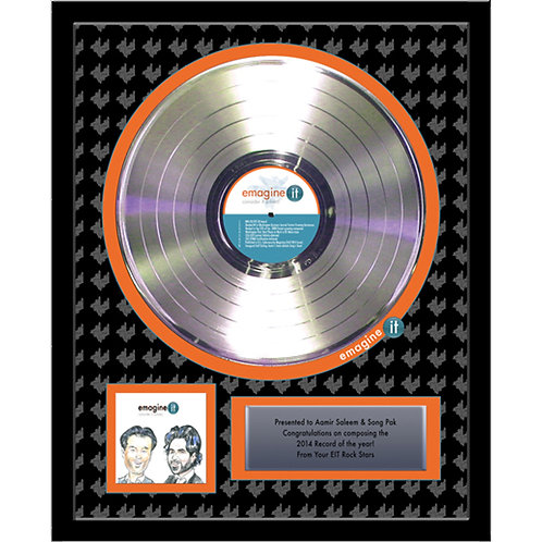 "12"" Deluxe Platinum Record Award"