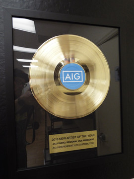 "12"" Basic Record Award"