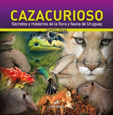 Cazacurioso