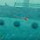Thumbnail: Bajo las olas