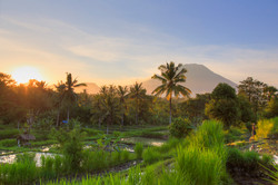 Bali-sunrise_cs