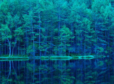 HPE and SAP partner to deliver SAP HANA® Enterprise Cloud with HPE GreenLake cloud services