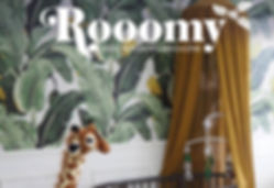 Rooomy_InstaTemplate Options.jpg