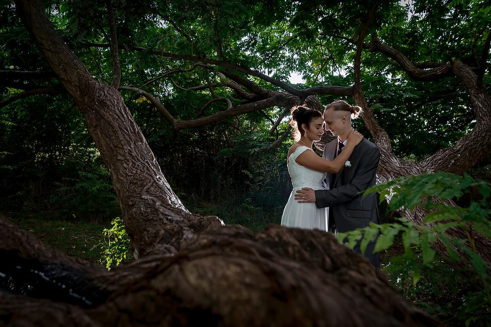 Pfäffikersee Hochzeitsfotograf