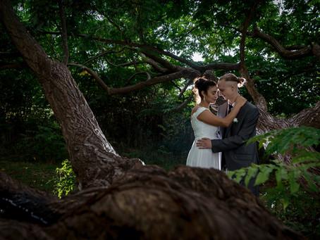 Wetzikon und Pfäffikersee: die Hochzeitsfotografin bei der zivilen Trauung als Geschenk