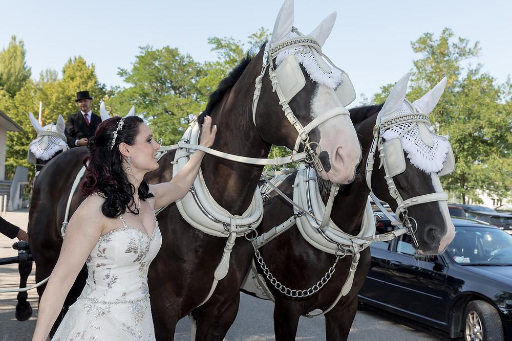 Hochzeitskutsche Pfäffikon