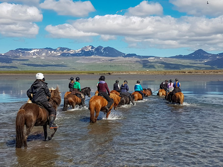 Reiten auf Island
