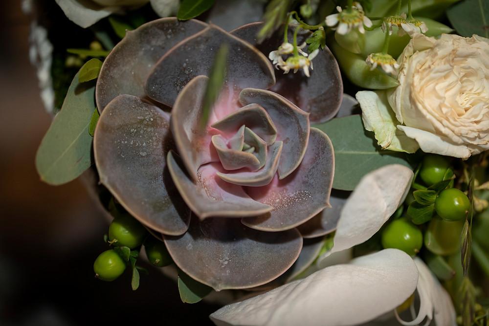 Detailbild Blume