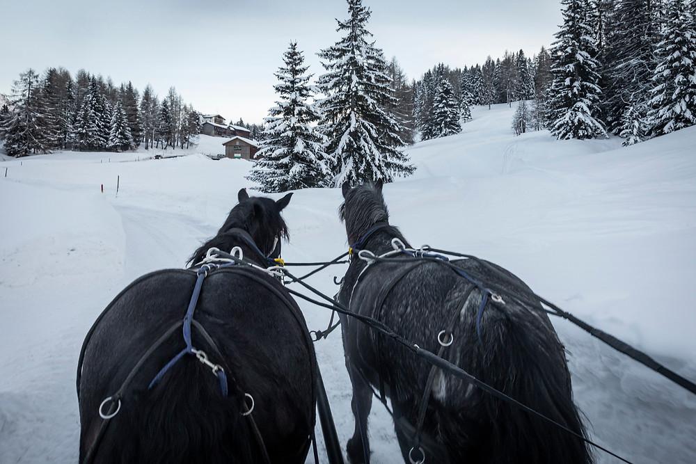 Winterhochzeit in Lenzerheide, Pferdekutsche