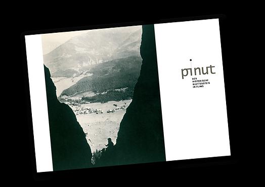 pinut-buch.png