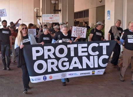 Perspectives on Organic Standards