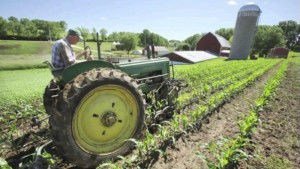 Farmland for New Sustainable Farmers: A Capitalist Approach to Land Reform